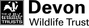 DWT-logo-2014-horizontal-approved-for-external-use